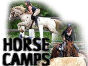 Horse camp image